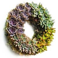 Succulent Centerpiece Wreath
